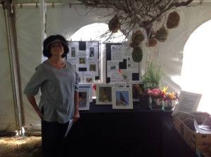 Club member Pat Redford at the Club stand that she designed and built. Visit the stand at Fernkloof Reserve from today until Sunday.