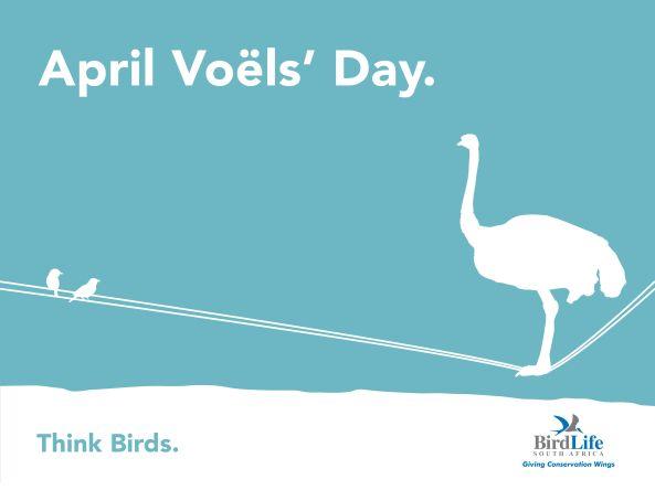 April Voels' Day